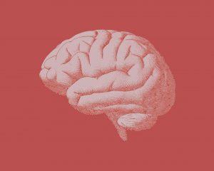 Romantic Neural Pathways Change
