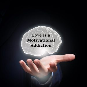 Love is a Motivational Addiction
