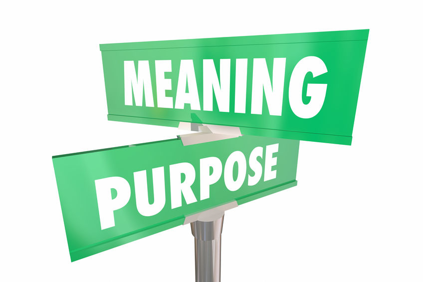 meaningful purpose